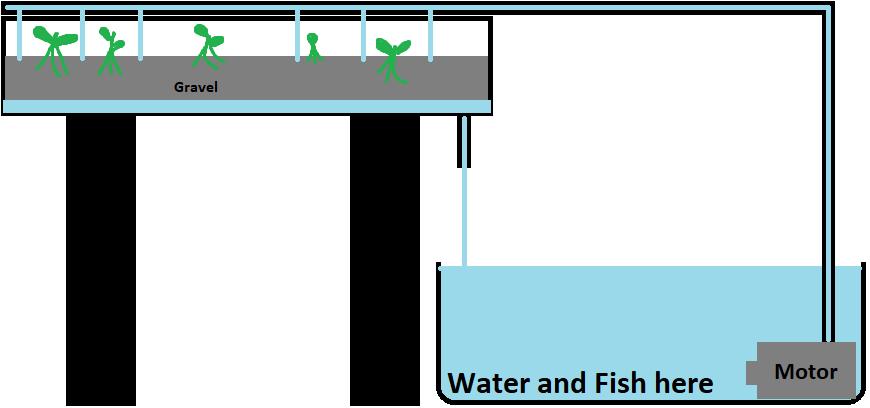 Home Automation Aquaponics
