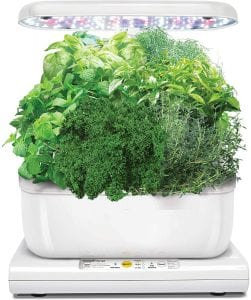 Our best 3 Indoor Herb Kits - Buyers Guide